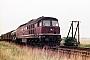 """LTS 0103 - DR """"131 001-0"""" 02.07.1989 - bei AngersdorfMichael Uhren"""