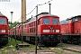 "LTS 0207 - Railion ""232 014-1"" 08.05.2010 - Saalfeld (Saale)Frank Weimer"