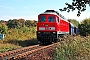 """LTS 0230 - DB Schenker """"233 040-5"""" 24.09.2010 - PetershainTorsten Frahn"""