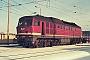 "LTS 0256 - DR ""132 066-2"" 18.02.1991 - Neustrelitz, Betriebswerk HauptbahnhofMichael Uhren"