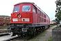 """LTS 0291 - Railion """"233 076-9"""" 29.08.2008 - SchwandorfStefan Hölzl"""