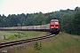 """LTS 0328 - DB Schenker """"233 112-2"""" 18.06.2010 - KodersdorfTorsten Frahn"""