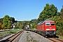 "LTS 0328 - DB Schenker ""233 112-2"" 29.09.2013 - Pockau-LengefeldFelix Bochmann"