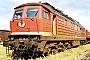 "LTS 0334 - DB Cargo ""232 118-0"" __.05.2002 - HalberstadtRalf Brauner"