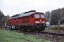 """LTS 0334 - DB Schenker """"233 118-9"""" 22.10.2009 - OberrohnHelmut Philipp"""