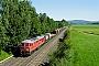 """LTS 0334 - DB Schenker """"233 118-9"""" 13.06.2009 - RöslauPavel Woratsch"""