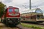 "LTS 0389 - TRIANGULA ""232 173-5"" 18.10.2019 - Dessau, HauptbahnhofFlorian Kasimir"