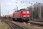 "LTS 0391 - Railion ""232 174-3"" 27.02.2008 - SeddinRudi Lautenbach"