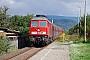 """LTS 0392 - DB Schenker """"233 179-1"""" 31.08.2010 - Nordhausen-SalzaFalk Hoffmann"""