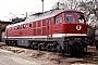 """LTS 0417 - DR """"132 203-1"""" 09.05.1991 - MagdeburgWerner Brutzer"""
