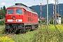 "LTS 0419 - Railion ""233 206-2"" 17.08.2007 - Lindau-Reutin SRS"