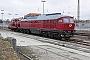 """LTS 0431 - TrainLog """"233 217-9"""" 24.01.2021 - Mannheim-RheinauErnst Lauer"""