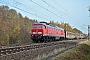 "LTS 0433 - DB Cargo ""233 219-5"" 09.11.2018 - Groß Kreutz (Havel)-GötzRudi Lautenbach"
