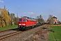 "LTS 0444 - DB Cargo ""233 232-8"" 06.04.2019 - Bad KöstritzDaniel Berg"