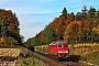 """LTS 0446 - Railion """"233 233-6"""" 25.10.2006 - TüsslingVolker Thalhäuser"""