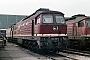 """LTS 0470 - DR """"132 256-9"""" 11.04.1989 - Neustrelitz, BetriebswerkMichael Uhren"""