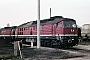 """LTS 0491 - DR """"132 278-3"""" 11.04.1989 - Neustrelitz, BetriebswerkMichael Uhren"""