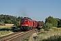 "LTS 0499 - DB Cargo ""233 285-6"" 27.06.2019 - TeichaAlex Huber"
