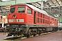 """LTS 0522 - DB Cargo """"233 306-0"""" 17.09.2016 - Cottbus, AusbesserungswerkOliver Wadewitz"""