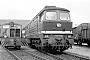 "LTS 0528 - DR ""132 313-8"" 18.05.1983 - Neustrelitz, BahnbetriebswerkBernd Wüstemann"