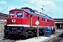 """LTS 0586 - DB AG """"234 351-5"""" 03.08.1994 - Berlin-Pankow, BetriebswerkW. Voigt (Archiv Werner Brutzer)"""