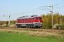 "LTS 0591 - WFL ""232 356-6"" 17.04.2019 - Genshagener HeideNorman Gottberg"
