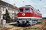 "LTS 0598 - DR ""132 363-3"" __.__.198x - Cottbus, BahnbetriebswerkDetlef Hanschke"