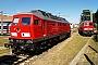 """LTS 0603 - DB Schenker """"233 367-2"""" 16.06.2010 - Cottbus, Ausbesserungswerk MSV"""