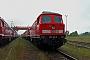 "LTS 0613 - Railion ""232 378-0"" 17.06.2007 - Sassnitz-Mukran (Rügen)Stephan Möckel"