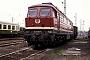 """LTS 0618 - DR """"132 383-1"""" 09.05.1991 - MagdeburgWerner Brutzer"""