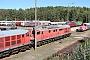 """LTS 0624 - WFL """"232 388-9"""" 19.09.2019 - Neustrelitz, Netinera Werke GmbHPeter Wegner"""