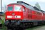 """LTS 0673 - Railion """"233 441-5"""" 23.04.2005 - HoyerswerdaTorsten Frahn"""