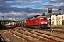 """LTS 0687 - DB Cargo """"233 452-2"""" 06.07.2016 - NossenSteven Metzler"""