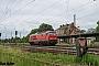 """LTS 0687 - DB Cargo """"233 452-2"""" 09.06.2017 - Leipzig-WiederitzschAlex Huber"""