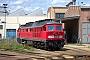"""LTS 0702 - Railion """"234 467-9"""" 04.07.2004 - Cottbus, AusbesserungswerkPeter Wegner"""