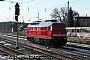 """LTS 0724 - MEG """"315"""" 05.02.2015 - Königs WusterhausenIngo Wlodasch"""