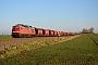 "LTS 0746 - DB Cargo ""233 511-5"" 18.12.2017 - BaalbergeMichael E. Klaß"