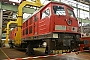 """LTS 0756 - DB Cargo """"233 521-4"""" 17.09.2016 - Cottbus, AusbesserungswerkOliver Wadewitz"""