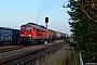 "LTS 0756 - DB Cargo ""233 521-4"" 11.11.2016 - OertzenhofAndreas Görs"