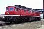 "LTS 0811 - DB AG ""234 551-0"" 15.04.1995 - Berlin-Grunewald, BetriebswerkD. Holz (Archiv Werner Brutzer)"