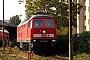 """LTS 0877 - Railion """"233 596-6"""" 25.10.2004 - Berlin-LichtenbergMarvin Fries"""