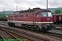 "LTS 0887 - DR ""132 606-5"" 27.09.1991 - Saalfeld (Saale), BahnhofNorbert Schmitz"