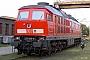 """LTS 0917 - Railion """"233 636-0"""" 21.07.2004 - Dresden-Friedrichstadt, BahnbetriebswerkTorsten Frahn"""