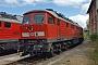 """LTS 0917 - DB Cargo """"233 636-0"""" 24.04.2016 - SchwandorfStefan Hölzl"""