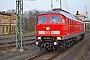 "LTS 0917 - DB Cargo ""233 636-0"" 02.04.2019 - Bad BelzigRudi Lautenbach"