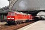 "LTS 0977 - Railion ""233 696-4"" 16.06.2006 - Dresden-Neustadt, BahnhofChristian Stolze"